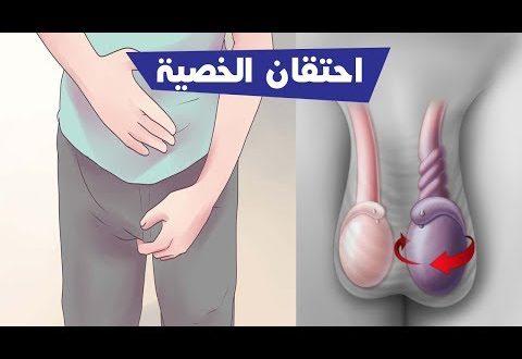 صور علاج احتقان الخصية , هل تعاني من التهابات في الخصيه