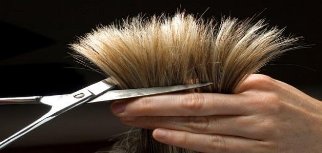 صور قص الشعر بالحلم , قص الشعر وحلاقته بين الخير ولا الشر