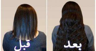 افضل طريقة لتطويل الشعر في اسبوع , طولى شعرك فى اقل فتره تتخيليها