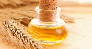 فوائد زيت جنين القمح للبشرة الدهنية , كيفية القضاء على مشاكل البشرة الدهنية نهائيا