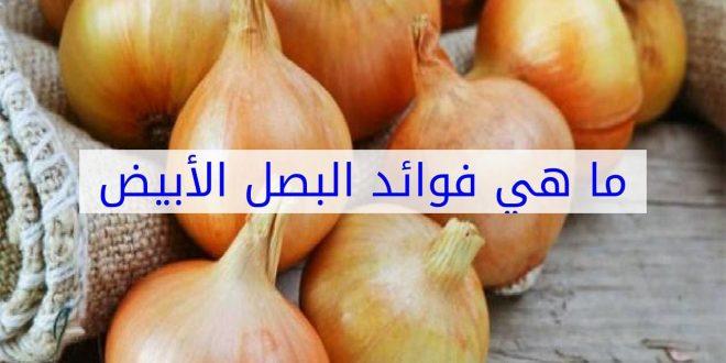 صورة فوائد البصل الابيض , اهمية اكل البصل