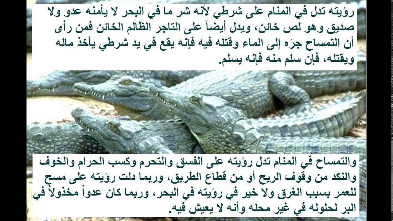 صور تفسير رؤية التمساح في المنام , التمساح في منامنا