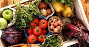 صور صور عن الغذاء الصحي , مواصفات الغذاء الصحى