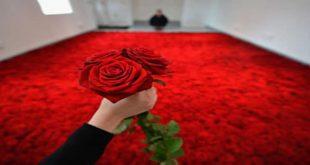 صور تفسير رؤية الورد الاحمر في المنام , الورد في الحلم