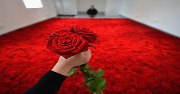 صورة تفسير رؤية الورد الاحمر في المنام , الورد في الحلم