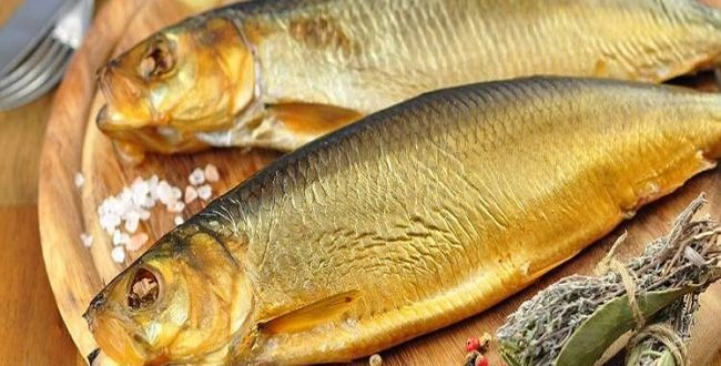 صورة الفسيخ في الحلم , اغرب تفسيرات الاسماك في الاحلام
