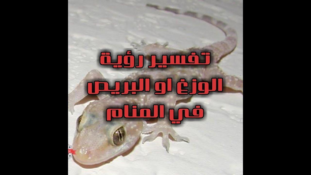 صورة البرص فى الحلم لابن سيرين , البرص عدو ولو قتلته انتصرت عليه