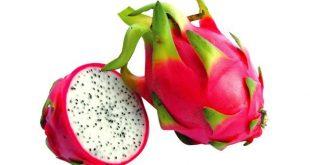 صورة اسماء فاكهة غريبة , اسماء فواكه لم تعرفها من قبل