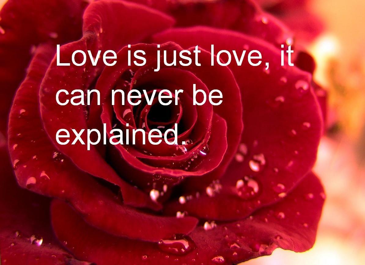صورة رسائل حب بالانجليزي , ارق كلمات الحب باللغة الانجليزية 1658 6