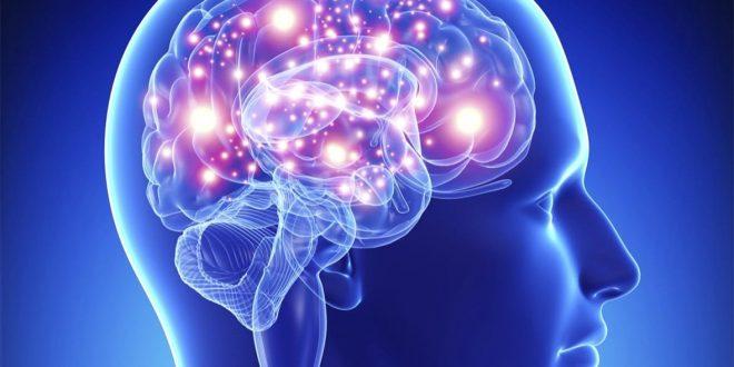 صورة ما معنى العقل , تعريف العقل