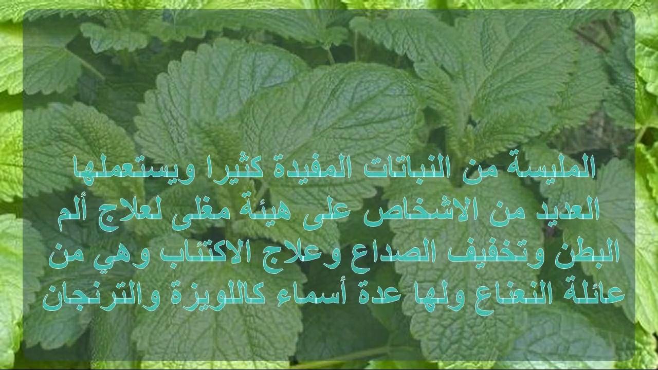 صورة علاج الوسواس القهري بالاعشاب , كيف اعالج الوسواس بالاعشاب