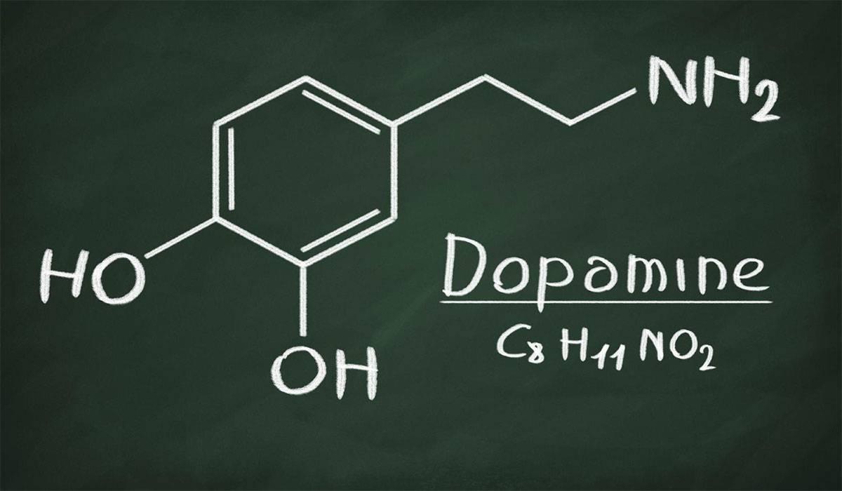 صورة ما هو الدوبامين , اضف الى معلوماتك عن الدوبامين