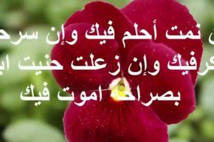 صورة كلمات لطلب الزواج , عبارات تعبر عن الوفاق والارتباط