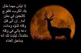 صور امثال جزائرية عن الحب , اروع ما قال الجزائريون عن الحب