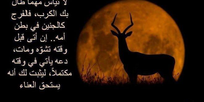 صورة امثال جزائرية عن الحب , اروع ما قال الجزائريون عن الحب