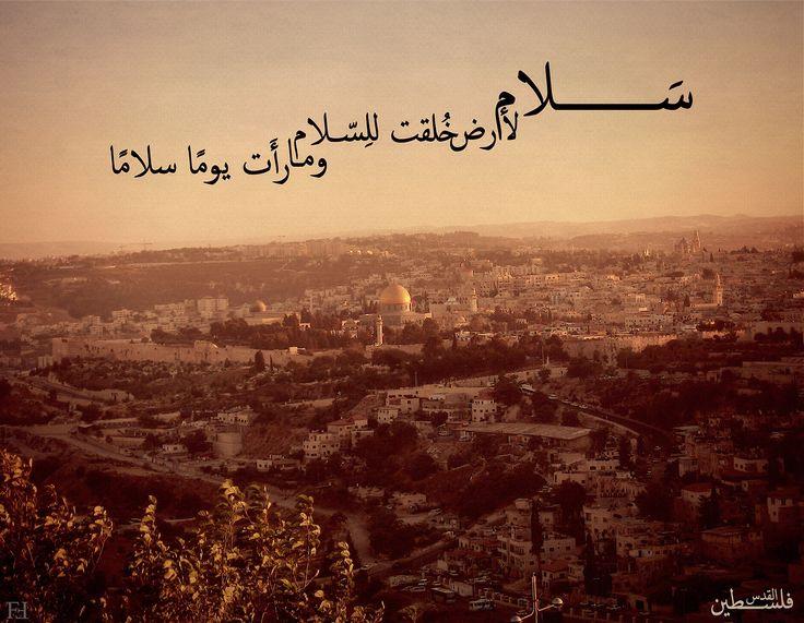 صورة ابيات شعر عن فلسطين , بالصور اجمل قصائد عن فلسيطن