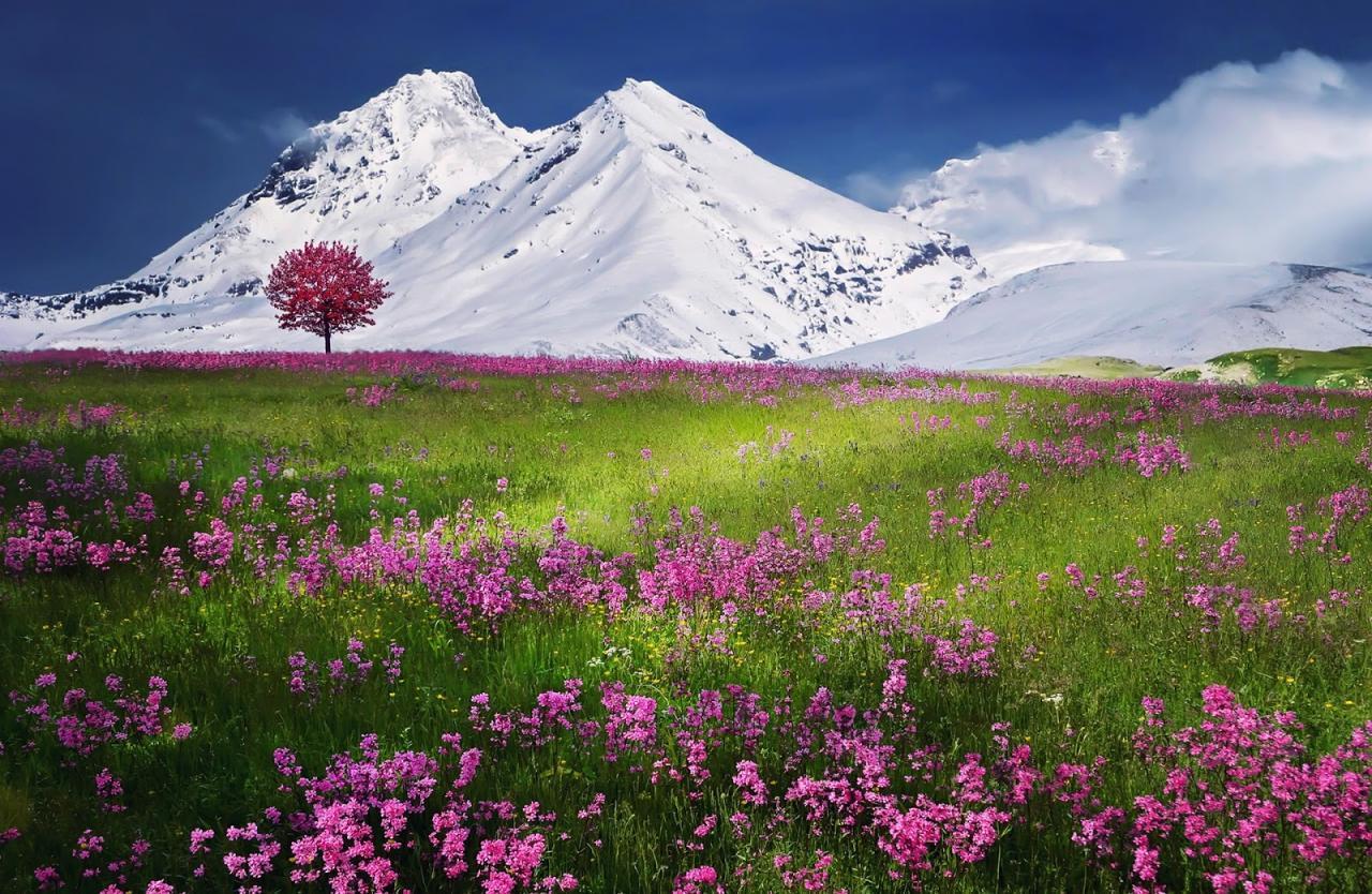 صورة مناظر طبيعية خلابه , استمتع بروعة الجمال الطبيعي الرباني