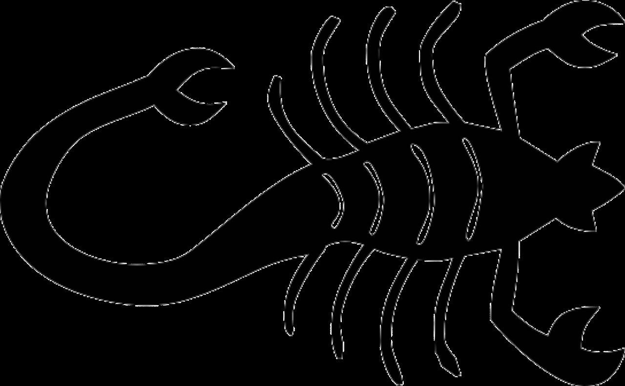 صورة شكل برج العقرب , صفات شكلية مثيرة كيف يبدو مواليد العقرب؟