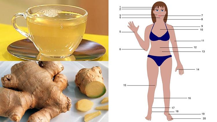 صورة فوائد العسل والزنجبيل , مقوي جنسي للجنسين اهم فوائد العسل والزنجبيل