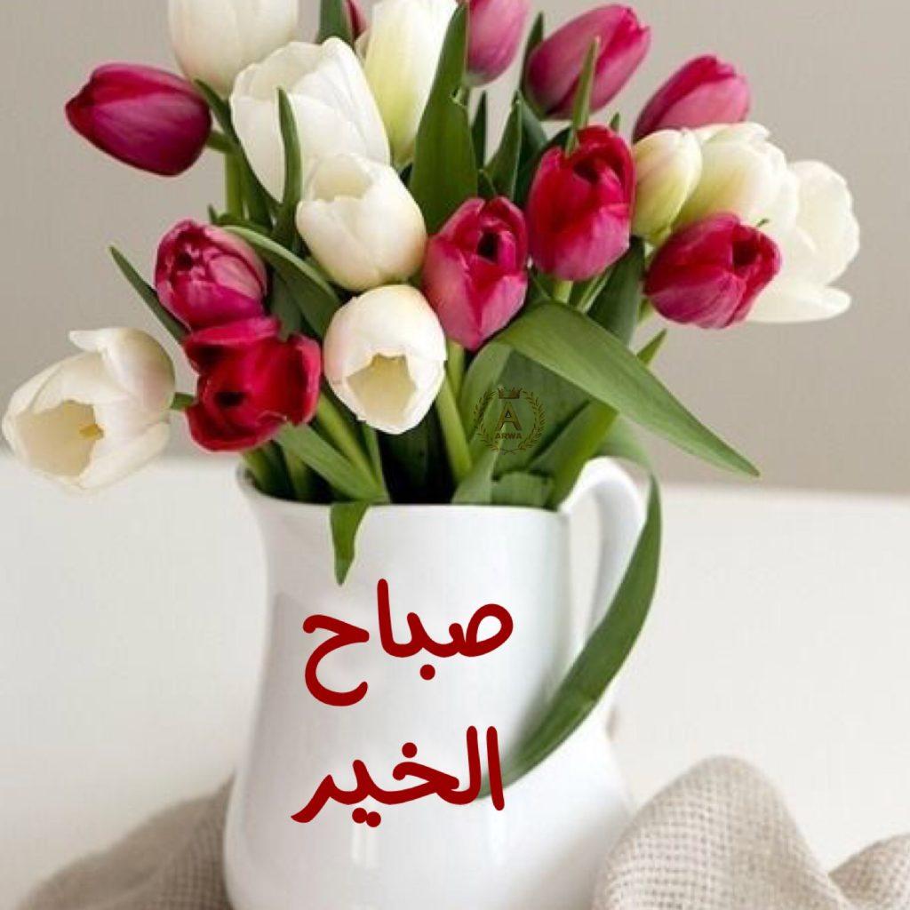 صورة اجمل الصور صباح الخير فيس بوك , صباح الخير يا فيسبوكاوية اجمل صور لك ولي