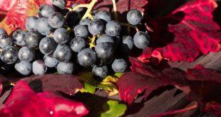 صورة فوائد العنب الاحمر للتخسيس , وداعا للوزن الزائد مع العنب