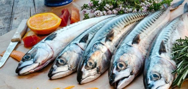 صورة فوائد سمك الماكريل , علاج فعال لتقوية الاعصاب