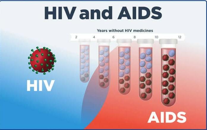 صورة كل المعلومات عن تحليل الايدز ,اسم تحليل الايدز 181