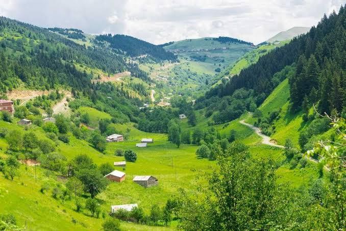 صورة صور الطبيعه في تركيا ,جمال الطبيعة في تركيا 250 3