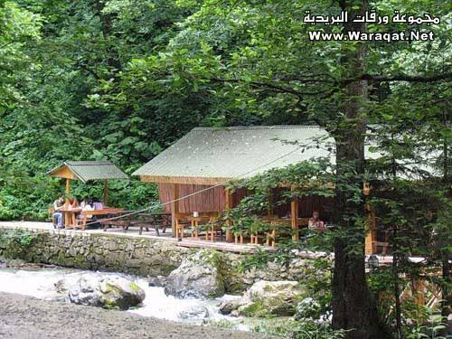 صورة صور الطبيعه في تركيا ,جمال الطبيعة في تركيا 250 5