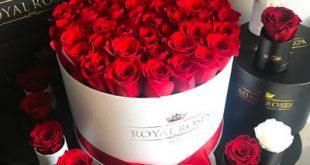 اجمل صور للورد الاحمر الجميل ,ورد احمر رومانسي